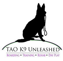 TAO K9 Unleased
