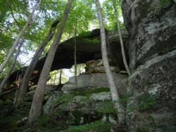 JRWS Fall Trail Series: Carter Caves, 11/19