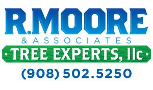 R. Moore & Associates Tree Experts