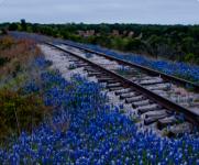 Railway 5K