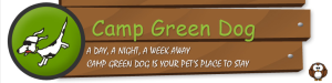 Camp Green Dog