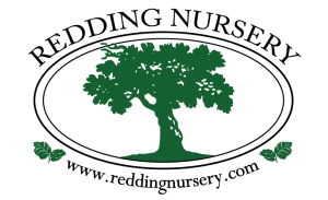 Redding Nursery