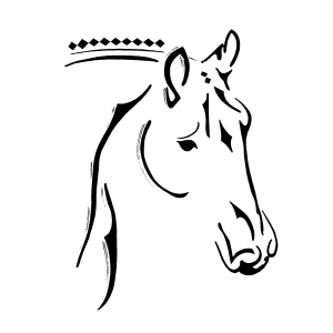 Cedar Hill Sport Horses