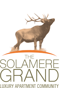 The Solamere Grand Luxury Apartments