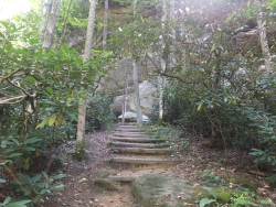 JRWS Fall Trail Series: Red River Gorge, 9/24