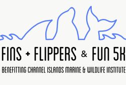 Fins, Flippers, & Fun 5K plus Kiddie 1K