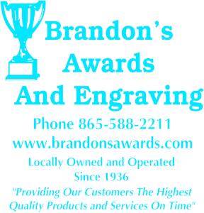 Brandon's Awards