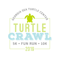 Georgia Sea Turtle Center Turtle Crawl Races