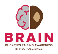 Brain Injury Awareness 5K Run and 1 Mile Walk