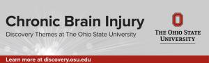 Chronic Brain Injury