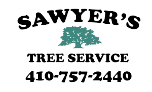 Sawyer's Tree Service