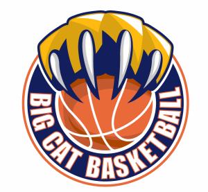 BigCat Basketball