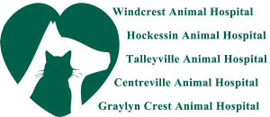 Windcrest Animal Hospital