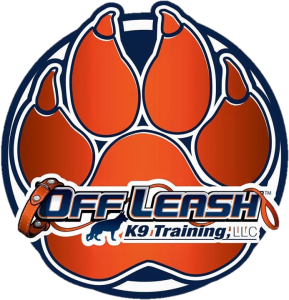 Offleash 9 Training