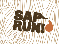 26th Annual Sap Run Kennedy Heights - 5K/10K/15K & Family Bike Ride