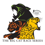 Big Cat Race Series 2018