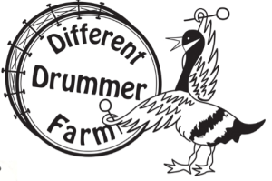 Different Drummer Farm