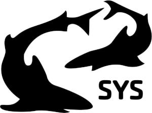 Sarasota Sharks Swim Team
