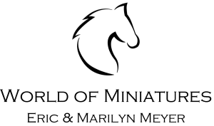 World of Miniatures
