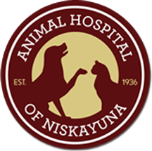 Animal Hospital of Niskayuna