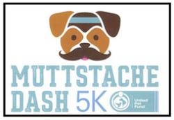 Muttstache Dash 5k
