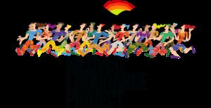 Medved Project Endurance
