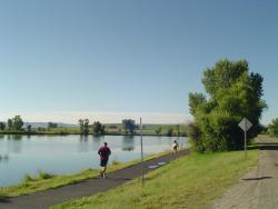 Race Groups: Headwaters Bank Run