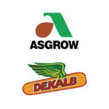 Dekalb Asgrow Seed