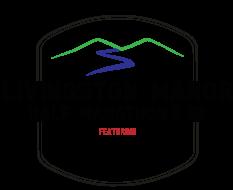 Virtual Livingston Manor Half Marathon & 5K, Featuring Catskill Brewery