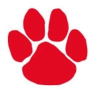 Bloomsburg Youth Football & Cheerleading Panther Pride 5k Run