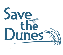 Dunes Dash Virtual 5K for Public Lands