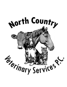 North Country Veterinary Services, P.C.