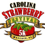 Carolina Strawberry Festival FAST 5K for Stroke Awareness