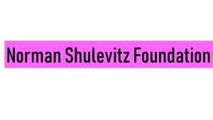 Norman Shulevitz Foundation