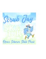 Scrub Jay Races