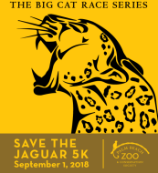 Save The Jaguar 5k