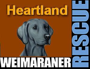 Heartland Weimaraner Rescue