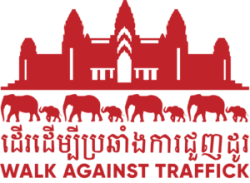 NC Walk Against Traffick