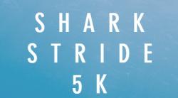 Shark Stride 5K