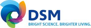 DSM Services