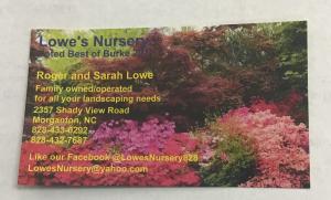 Lowe's Nursery