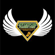 Aviator Flight Fest
