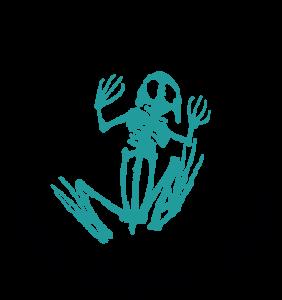 Frog Bones