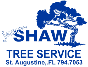 Jason Shaw Tree Service