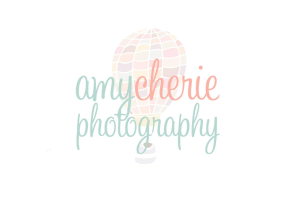 AmyCherie Photography