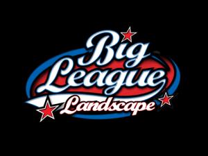 Big League Landscape