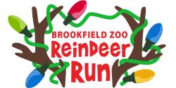 Brookfield Zoo Reindeer Run
