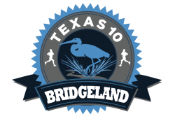 2020 Bridgeland 10 Miler presented by Houston Methodist