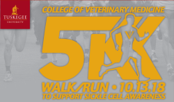 College of Veterinary Medicine 'Strides for a Cure' 5K Walk/Run