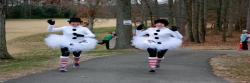 Jingle Bell 5K & Kids Fun Run